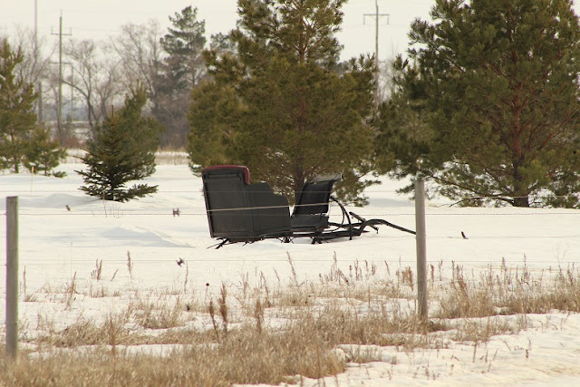 An unused sleigh in the field