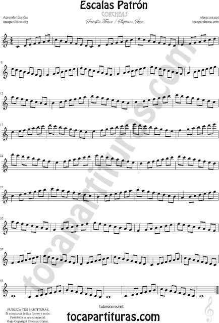Partitura de Saxofón Tenor y Soprano Aprender Escalas Patrón en Corcheas - Técnicas Ejercicio para Saxofonistas Mi bemol and B flat Estudio Ascendente - Descendente