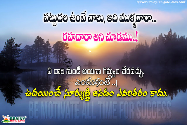 best life value messages in telugu, being success in life quotes in telugu, telugu motivational messages