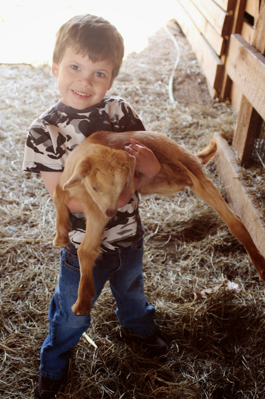 Hannah S Scrapbook G Is For Goat