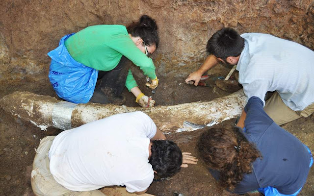 Θεμελιώνεται το πρώτο Παλαιοντολογικό Μουσείο και Πάρκο Φυσικής Ιστορίας της Πελοποννήσου