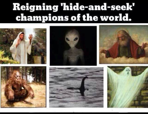 Reigning Hide-and-seek Champions Meme