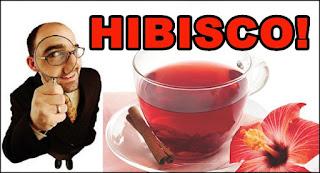 Benefícios do Chá de Hibisco para saúde e Malefícios também