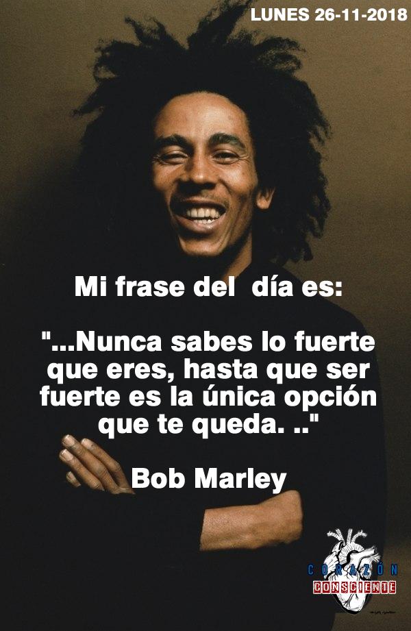 Frases Del Día Motivación Y Algo Más Bob Marley