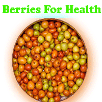 importance of berries