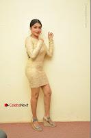 Actress Pooja Roshan Stills in Golden Short Dress at Box Movie Audio Launch  0135.JPG