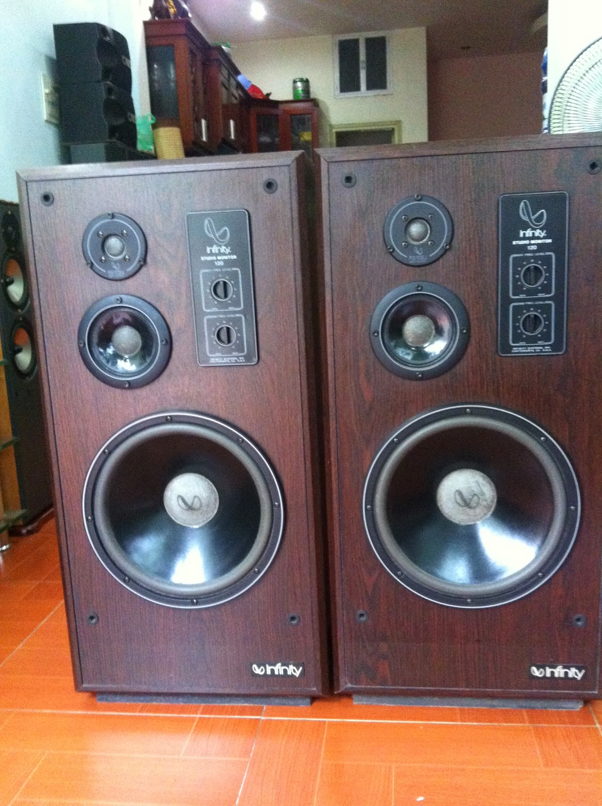 Loa Infinity - Mỹ, model: Infinity Monitor 120 - Made in USA