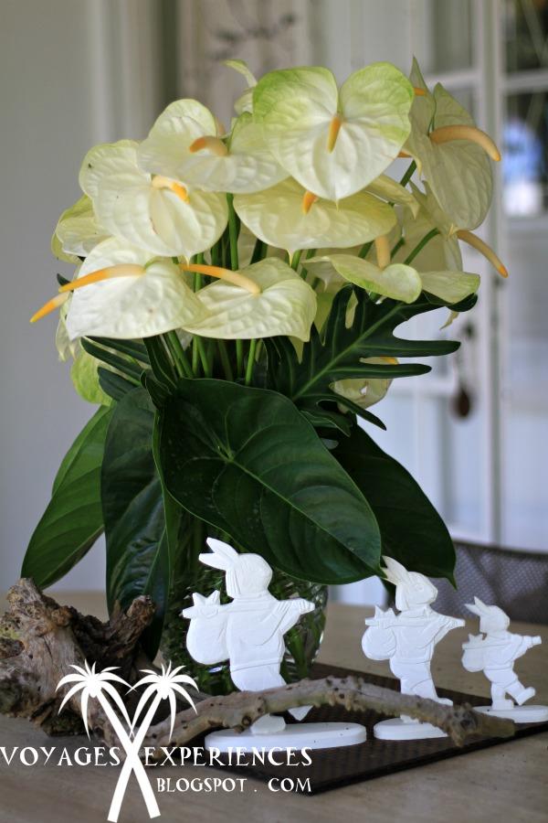 Bien connu Voyages et Expériences : Fleurs de l'île Maurice! Des bouquets d  MN68