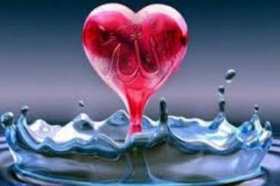Sucikan Hati Maka Hidayah Dan Petunjuk-Nya Akan Datang