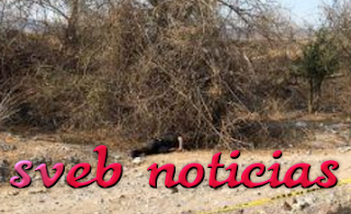 Hallan otro ejecutado este Viernes en Zumpango Guerrero