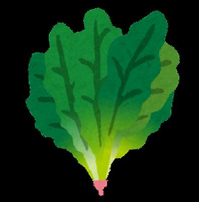 ほうれん草のイラスト(野菜)