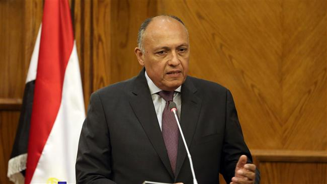 Egypt defends Libya airstrikes, says terror training camps were destroyed