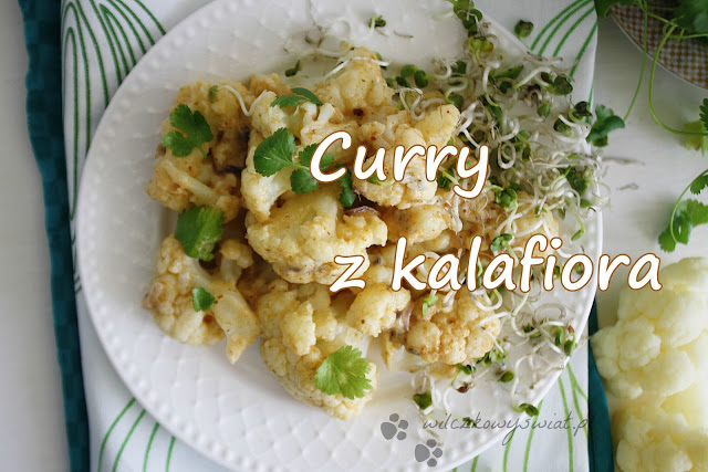 Curry z kalafiora