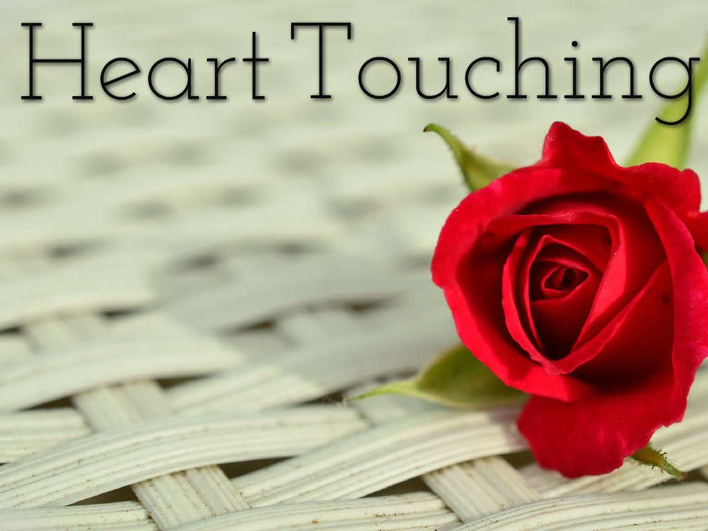 Heart Touching Status In Hindi True Life Status Allstatusguru