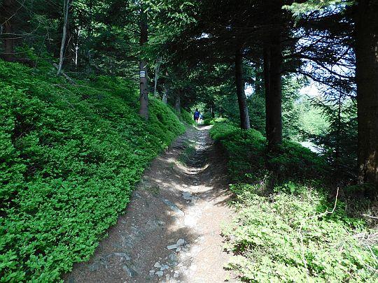 Podejście na Przełęcz Okraj.