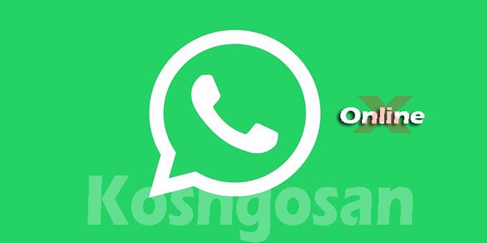 Cara Menghilangkan Status Online WhatsApp Tidak Ketahuan Teman
