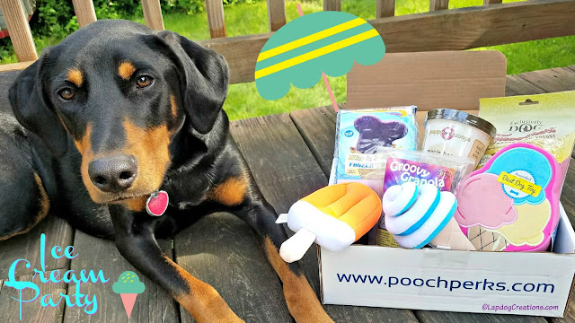 pooch perks dog subscription box rescue doberman