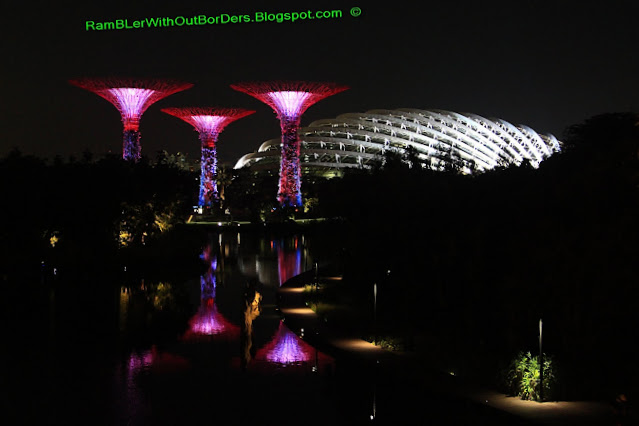 Supertrees and Flower Dome, Gardens by the Bay, Singapore