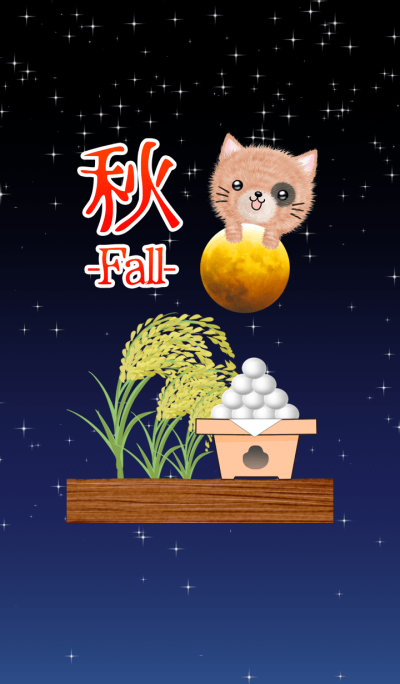 Theme of Fall Tortoiseshell cat