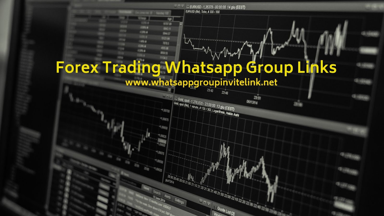 Whatsapp Group Invite Links: Forex Trading Whatsapp Group Links