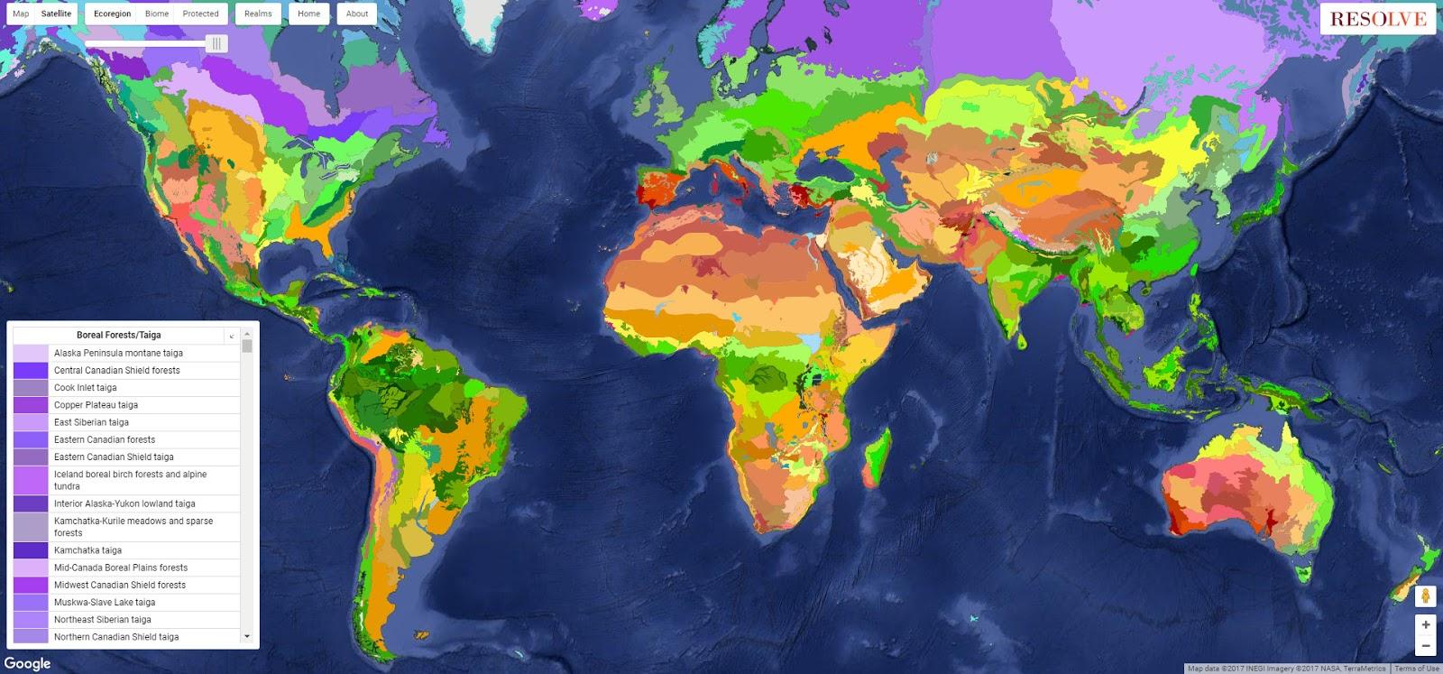 World Ecoregions
