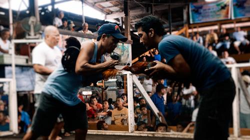 Sejarah Sabong di Filipina