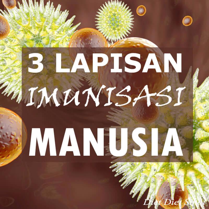 cara sebenar sistem imunisasi manusia bertindak