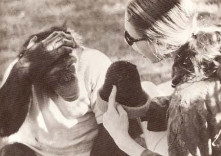 Washoe y Koko: lengua de signos en primates