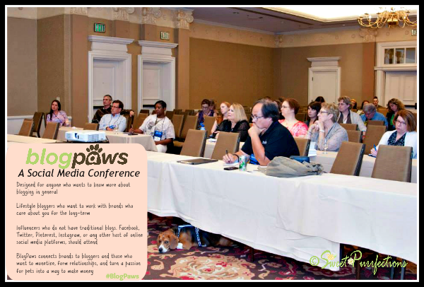 Mom Paula in a BlogPaws Session in 2015