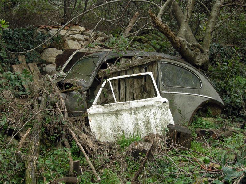 Машина-в-Ластве-Черногория