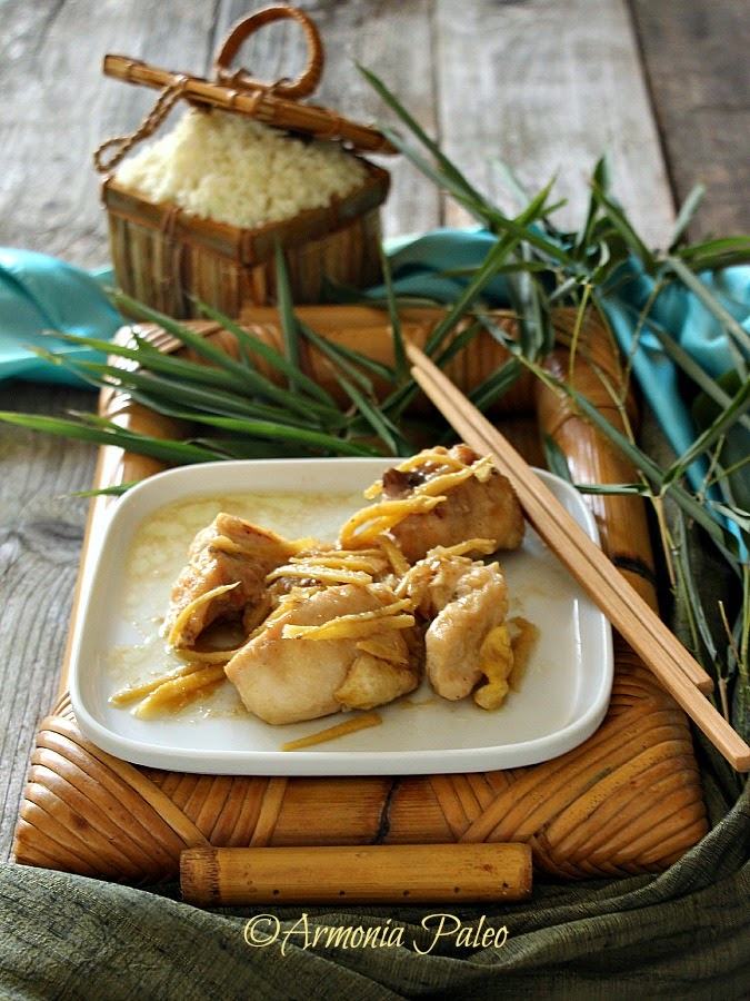 Armonia paleo ga kho gung pollo con zenzero alla vietnamita for Cucinare zenzero