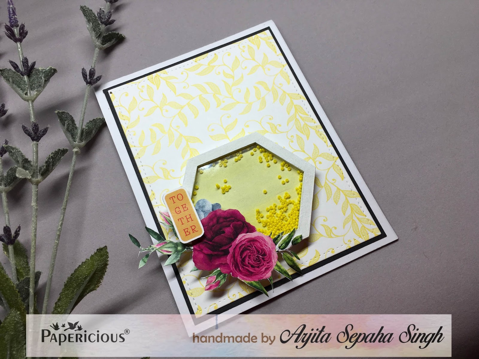 Cute cards using mini shaker elements papericious i hope you liked this post and will want to recreate it here is the list of supplies which will be needed and you can buy them at papericious kristyandbryce Gallery