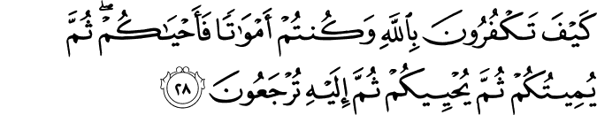 Surat Al-Baqarah Ayat 28