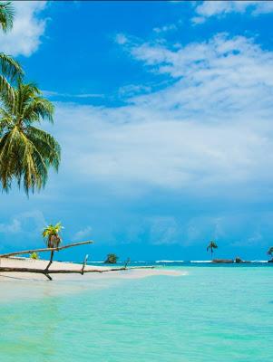 Bocas del Toro isla paradisíaca