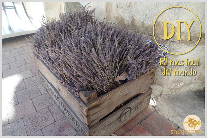 inspiracion callejera - cajon vintage con plantines de lavandas - buena idea para un DIY