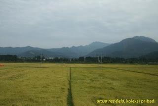Perekonomian di Sektor Pertanian: menengok ke negeri sakura