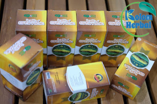 Obat Herbal Penyakit Jantung Bocor