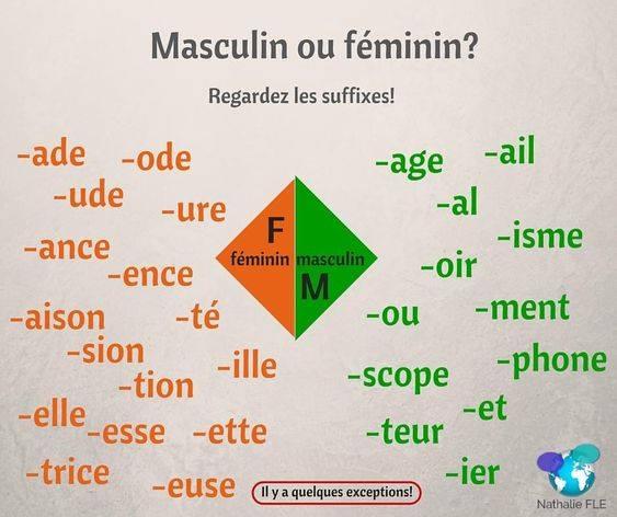 Rzeczowniki rodzaju męskiego i żeńskiego - gramatyka 1 - Francuski przy kawie