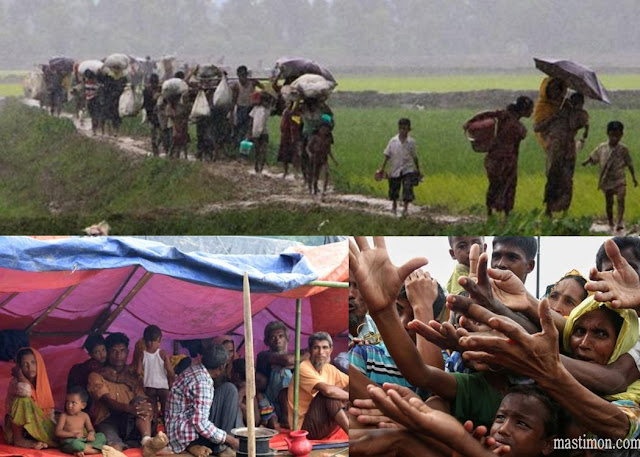 Cerita sebenarnya tentang ROHINGYA di Myanmar menurut sumber Terpercaya