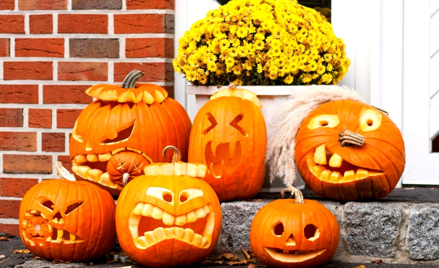 Funny Pumpkin Carving Wallpaper Halloween Wallpapers Awards