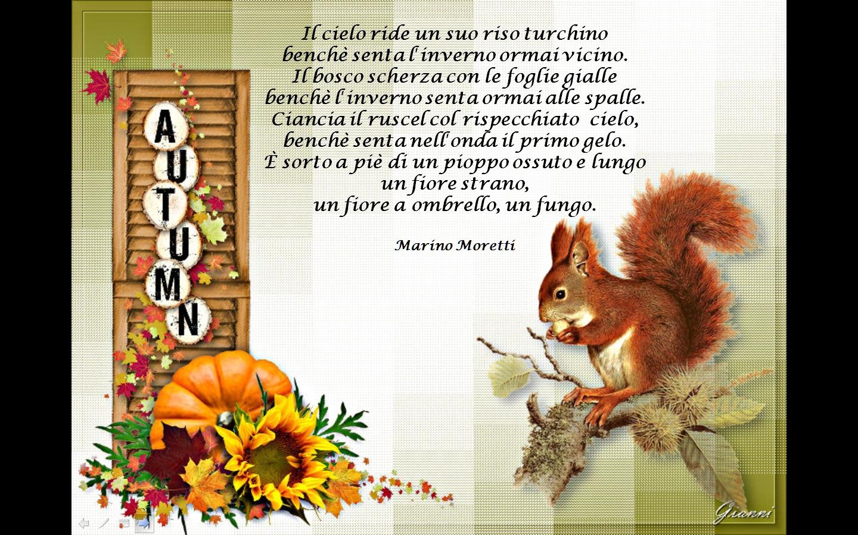 Amato Gianna : il bene in noi: L'autunno visto da autori famosi YH43