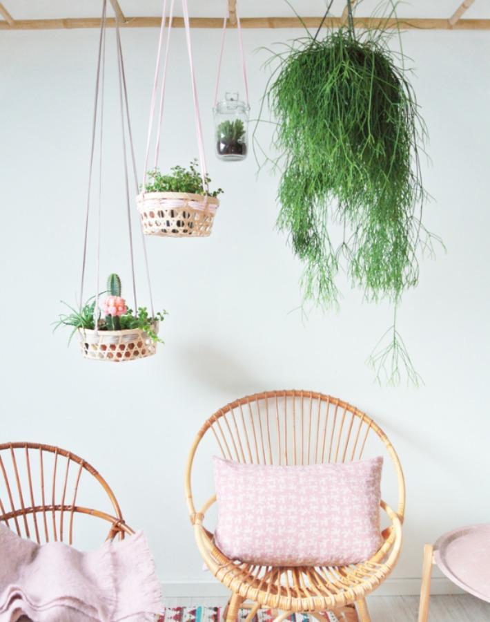 8 Diy e ideas para crear decoración Urban Jungle