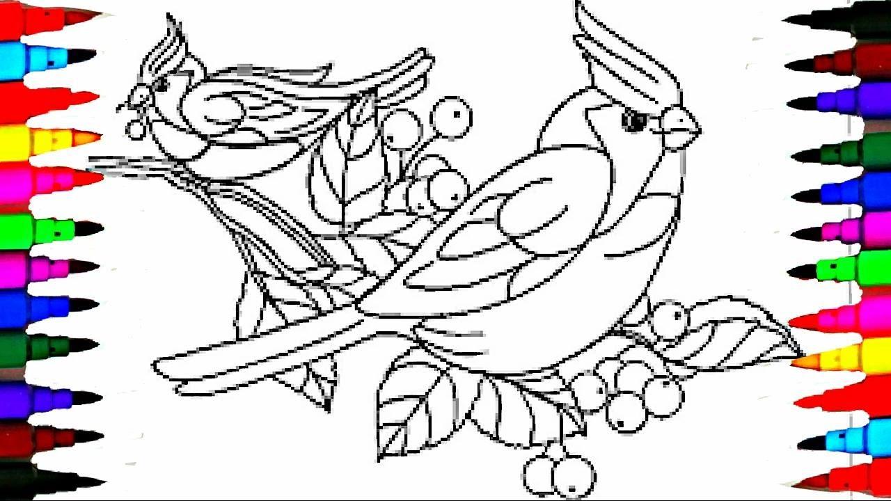 Sketsa Burung Terbang Wwwtollebildcom