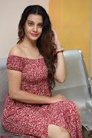 Diksha Panth in a Deep neck Short dress at Maya Mall pre release function ~ Celebrities Exclusive Galleries 028.JPG