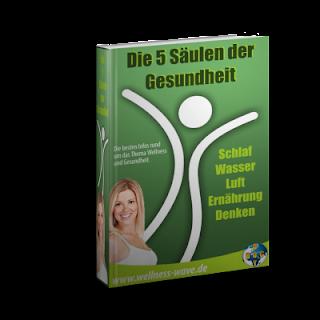 eBook-5-saulen-h5t.png