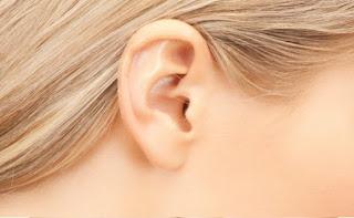Indra Pendengar (Bagian, Fungsi, dan Macam-macam Kelainan pada Telinga)