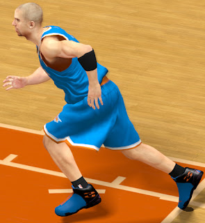 NBA 2K13 Air Jordan XX8 Shoes Patch