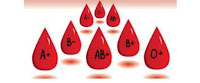 blood,blood group,blood type,blood groups,blood types,abo blood group system,blood transfusion,blood group o,abo blood group,blood typing,rh blood group system,blood cells,blood type diet,blood donation,blood group b,o blood group,blood group a,blood group ab,hh blood group,o-ve blood group,blood grouping all,abo blood groups,blood group type,blue blood,type a blood group,blood (biofluid)