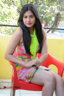 Telugu Actress Prasanna Stills in Short Dress at Inkenti Nuvve Cheppu Press Meet Stills  0145.JPG