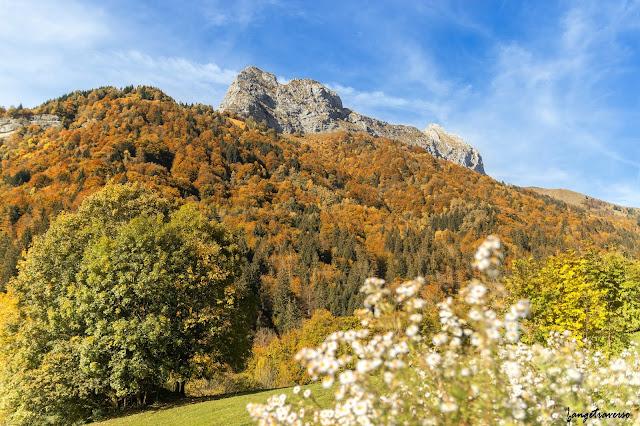 Pointe de l'Arcalod, Jarsy, Savoie, Massif des Bauges, Alpes - France